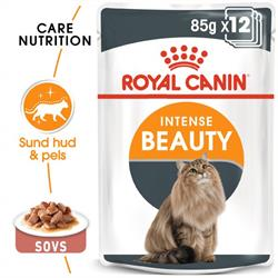 Royal Canin Intense Beauty 12 x  80g i sovs.