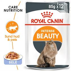 Royal Canin Intense Beauty 12 poser á 85 g
