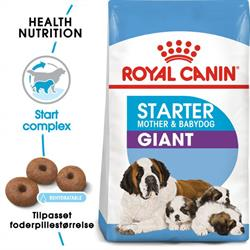 Royal Canin Giant Mother & Babydog