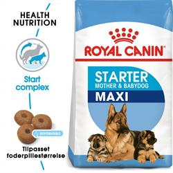 Royal Canin Maxi Starter Mother & Babydog 30