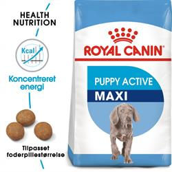 Royal Canin Maxi Puppy Aktive 15 kg