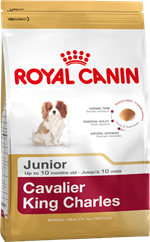 Royal Canin Cavalier King Charles Junior